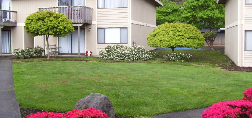 Beautiful-Landscaping-at-Bryn-Mar-Apartments